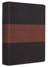 ESV Personal Size Study Bible--soft leather-look, deep brown/tan with trail design