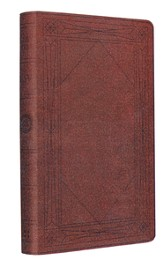 ESV Thinline Bible, TruTone, Brown, Window Design