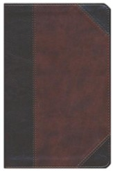 ESV UltraThin Bible (TruTone, Brown/Walnut, Portfolio Design), Leather, imitation