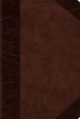 ESV Reader's Bible (TruTone, Brown/Walnut, Portfolio Design), Imitation Leather