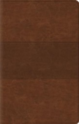 ESV Value Thinline Bible, TruTone, Chestnut with Trail Design