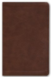 ESV Premium Gift Bible--soft leather-look, deep brown