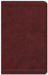 ESV Value Thinline Bible--soft leather-look, chestnut