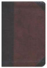 ESV Personal Reference Bible (TruTone, Brown/Walnut, Portfolio Design), Imitation Leather, Brown