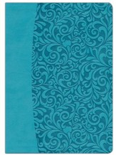 Everyday Life Bible: The Power Of God's Word For... (Turquoise Leatherette Binding)