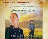 Promise Box - unabridged audiobook on MP3-CD