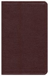 NIV Hebrew-Greek Key Word Study Bible, Bonded Leather Burgundy 1984