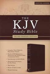KJV Study Bible--genuine leather, brown (indexed)