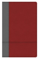 KJV Study Bible: Students' Edition - leather-look, gray/maroon, Thumb-Indexed