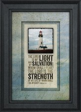The Lord Is My Light Framed Art