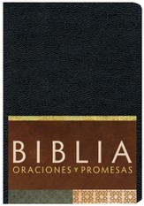 Biblia Oraciones y Promesas RVC, Piel Sim. Negra  (RVC Prayers & Promises Bible, Black Sim. Leather)