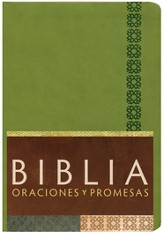 Biblia Oraciones y Promesas RVC, Piel Sim. Verde Manzana Ind.  (RVC Prayers & Promises Bible, Apple Green Sim. Leather Ind.)