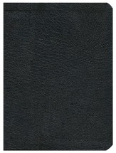 HCSB Apologetics Study Bible, Black Genuine Leather, Indexed - Slightly Imperfect