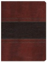 HCSB Apologetics Study Bible, Mahogany Simulated Leather, Indexed