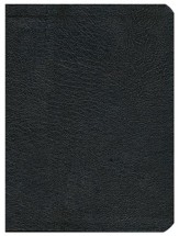 HCSB Apologetics Study Bible, Black Genuine Leather