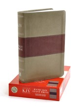 KJV Hand Size Giant Print Reference Bible, Khaki & Rose Quartz Simulated Leather