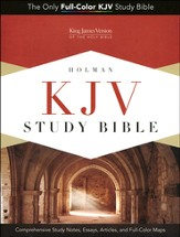 KJV Study Bible, Blue/taupe soft leather-look, indexed