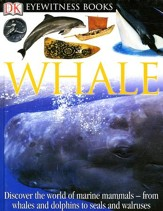 Eyewitness: Whale