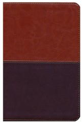 NKJV UltraThin Reference Bible, Brown and Tan LeatherTouch