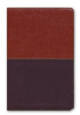 NKJV UltraThin Reference Bible, Brown and Tan LeatherTouch, Thumb-Indexed