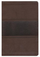 KJV Large Print UltraThin Reference Bible, Brown and Chocolate Imitation Leather