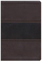 KJV Large Print UltraThin Reference Bible, Brown and Chocolate Imitation Leather, Thumb-Indexed