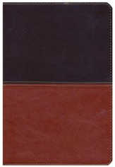 HCSB Giant Print Reference Bible, Brown and Tan LeatherTouch, Thumb-Indexed