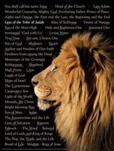 Lion of Judah Laminated Wall Chart