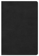 HCSB Large Print Personal Size Bible, Black LeatherTouch