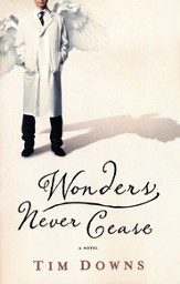 Wonders Never Cease - eBook