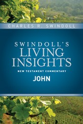 Insights on John - eBook