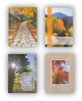 Scenic Encouragement Cards, Box of 12