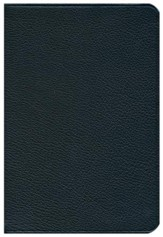NIV Pitt Minion Reference Bible, Goatskin Leather, black