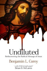 Undiluted: Rediscovering the Radical Message of Jesus - eBook