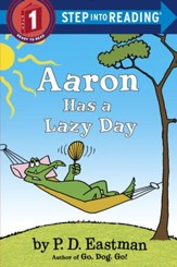 Aaron Has a Lazy Day - eBook