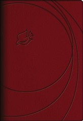 NLT New Spirit Filled Life Bible, Leathersoft, brick red-indexed