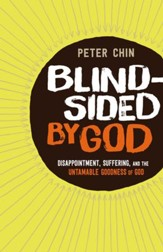 Blindsided by God: Disappointment, Suffering, and the Untamable Goodness of God - eBook