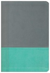 NKJV Modern Life Study Bible, Leathersoft, turquoise/gray, indexed