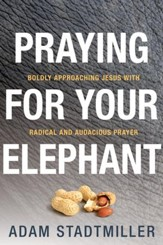 Praying for Your Elephant: Boldly Approaching Jesus with Radical and Audacious Prayer - eBook