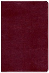 KJV Waterproof Bible, Burgundy Imitation Leather - Imperfectly Imprinted Bibles