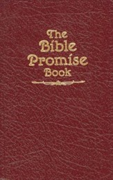 The Bible Promise Book KJV - eBook