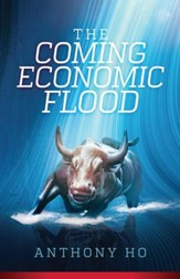 The Coming Economic Flood - eBook