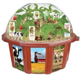 Farmer's Garden, Edible Dome Terrarium