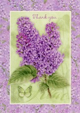 Thank You Cards, Lilacs, Pack of 36