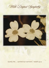 Sympathy Cards, Dogwood, Pack of 36