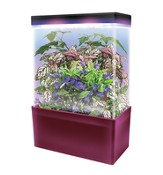 Tropical Jungle, LED Light Cube Terrarium