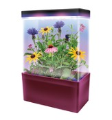 Mini Meadow, LED Light Cube Terrarium