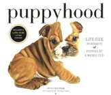 Puppyhood 2014 Wall Calendar