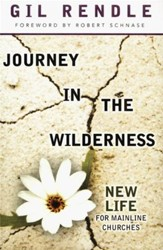 Journey in the Wilderness: New Life for Mainline Churches