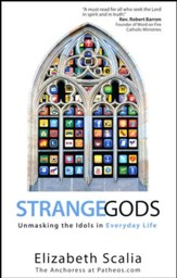 Strange Gods: Unmasking the Idols in Everyday Life